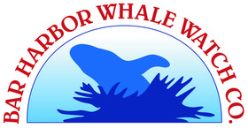 Bar Harbor Whale Watch Logo