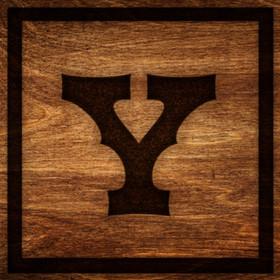 Box Y Lodge Logo